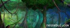 Ormandaki Gizli Sincaplar