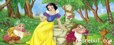 Pamuk Prenses Gizli Sayılar
