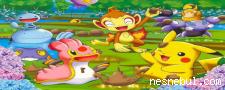 Pokemon Gizli Objeler