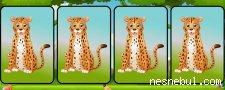 Hangisi Farklı Hayvanlar